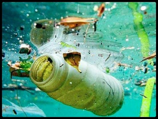 Mar de plástico. Foto: AZTI